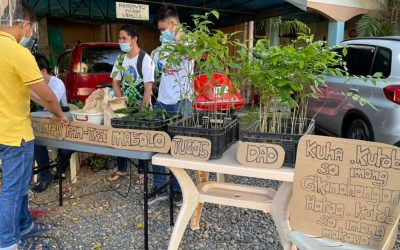 Seminary spearheads 'community pan-TREE' initiative