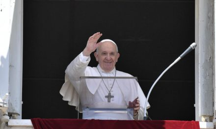 Pope Francis at the Angelus: 'Let Jesus look at and heal your heart'