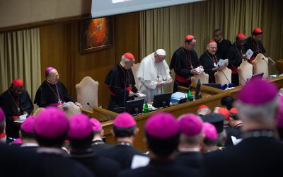 Members of commissions preparing synod on synodality unveiled