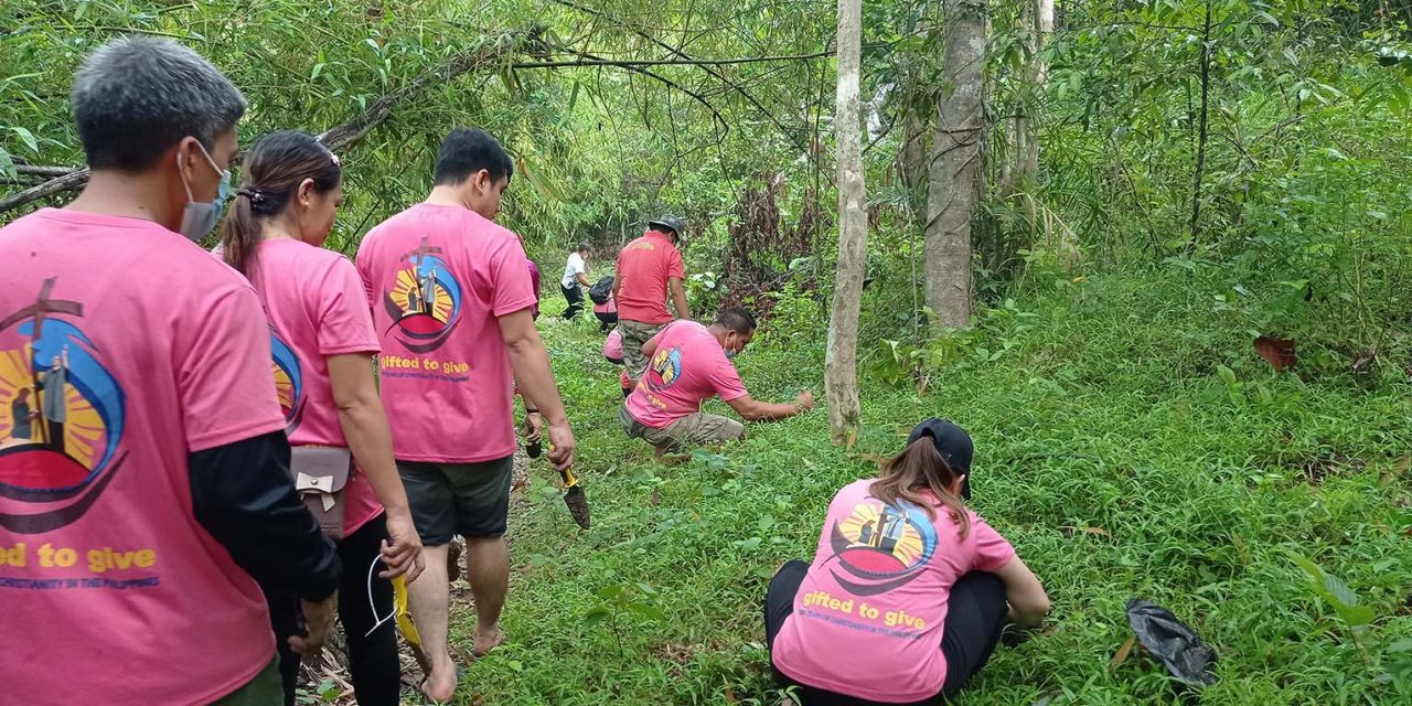 Bulacan parish plants bamboo for 500YOC