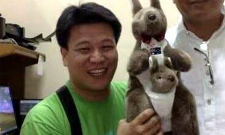 Manila-based Chinese priest dies of Covid-19