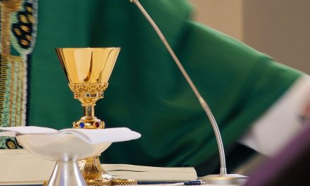Priest gets 'irreversible' suspension for entering politics